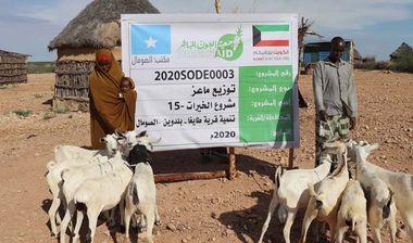 Directaid مشاريع التنمية Al-Khairat Project-15 4