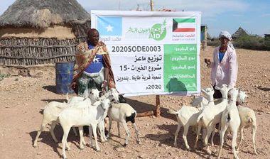 Directaid مشاريع التنمية Al-Khairat Project-15 7