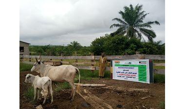Directaid مشاريع التنمية Jawhra Al-Khair Project -2 1