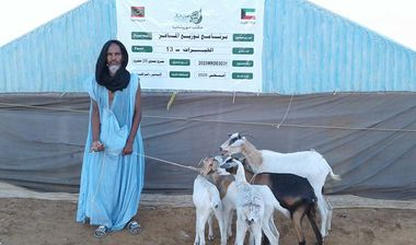 Directaid مشاريع التنمية Al-Khairat Project-13 2
