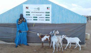 Directaid مشاريع التنمية Al-Khairat Project-13 7
