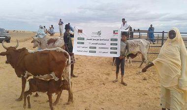 Directaid مشاريع التنمية Jawhra Al-Khair Project -13 2