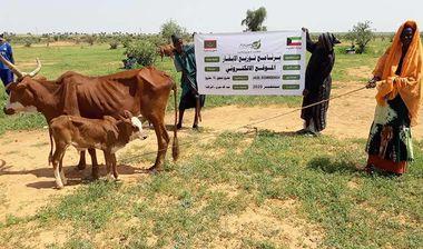 Directaid مشاريع التنمية Jawhra Al-Khair Project -14 4