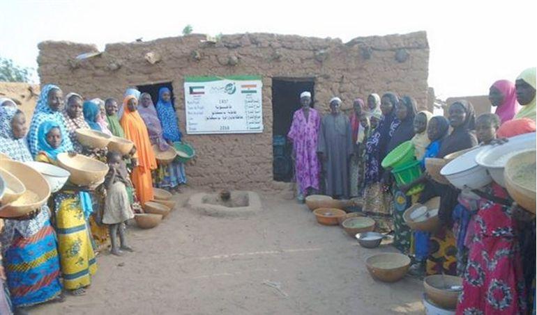 Directaid development Niger Mill 2