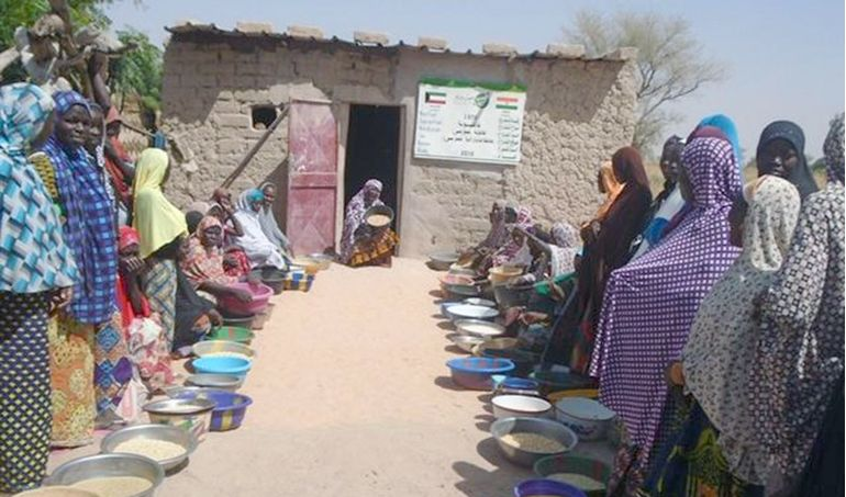 Directaid development Niger Mill 4