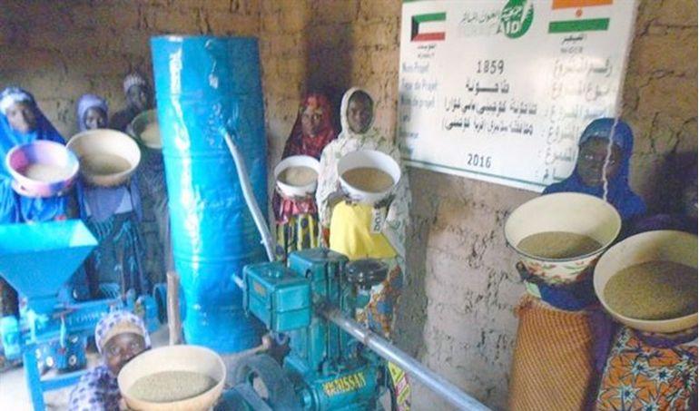 Directaid development Niger Mill 5
