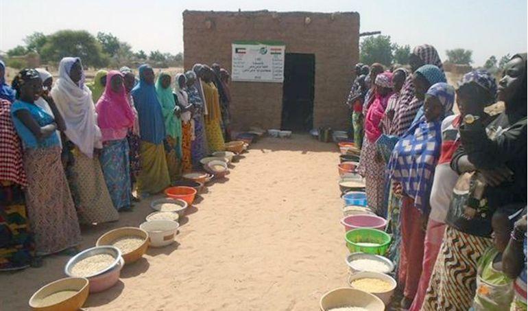 Directaid development Niger Mill 8
