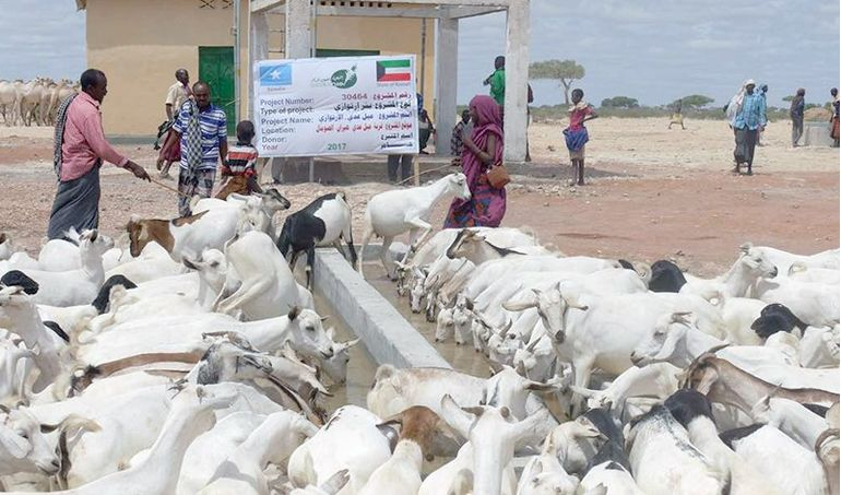 Directaid Water Projects Hiran Well - Somalia 4