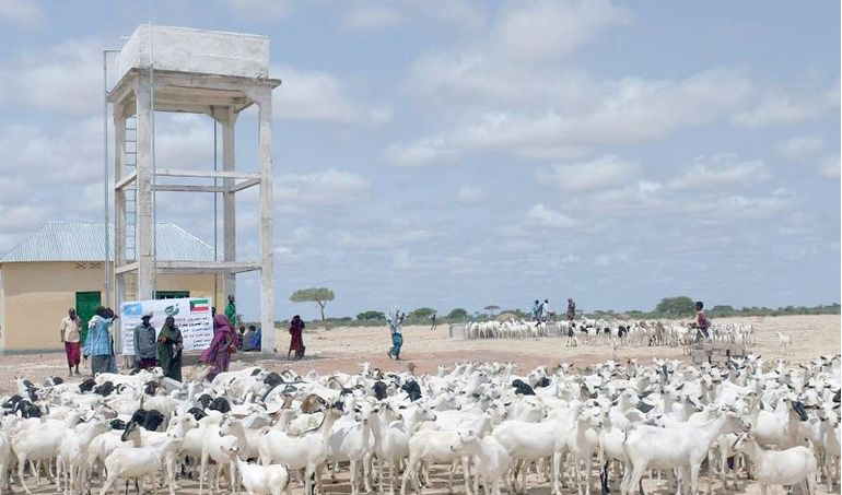 Directaid مشاريع المياه Hiran Well - Somalia 5