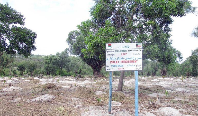 Directaid  Planting Menakara Orphanage 1