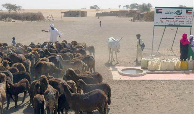 Directaid Water Projects Safa and Marwa Well 1