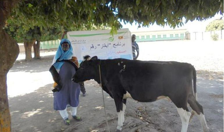 Directaid مشاريع التنمية Development Goat - 2 1