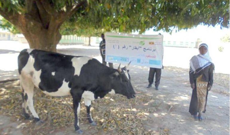Directaid مشاريع التنمية Development Goat - 2 2