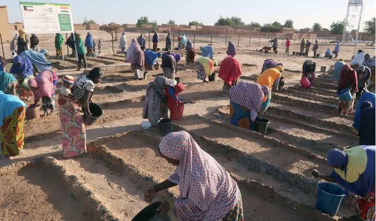 Directaid مشاريع التنمية Al Barakat Farm 2