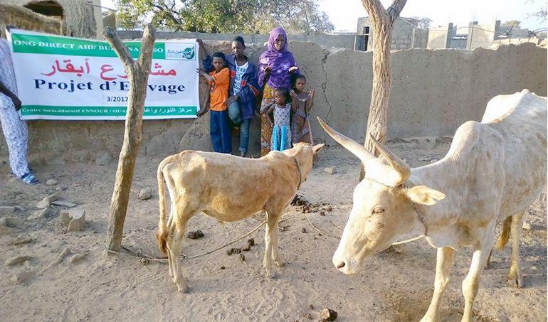 Directaid مشاريع التنمية Development Goat - 2 10