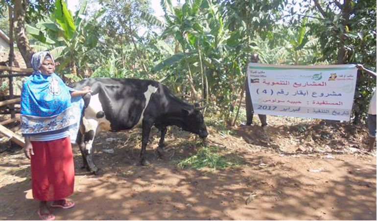 Directaid مشاريع التنمية Development Goat - 2 3