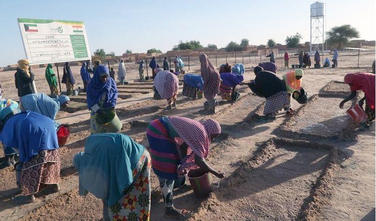 Directaid مشاريع التنمية Al Barakat Farm 4