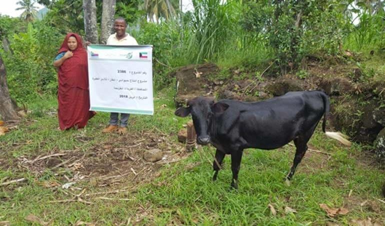 Directaid مشاريع التنمية Cows Project - Poor Family-6 3