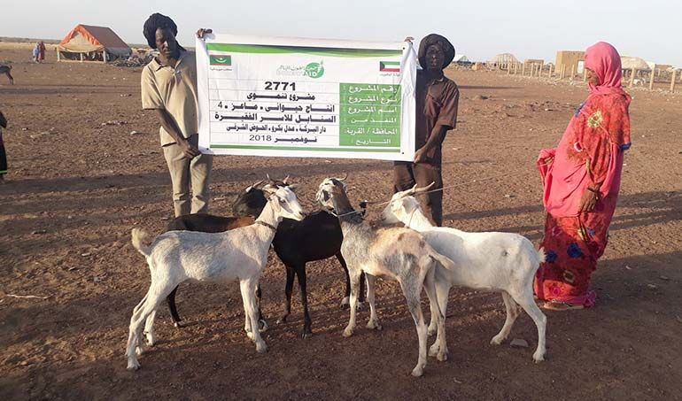 Directaid مشاريع التنمية Al-Sanabel Project - Goat Production-4 5