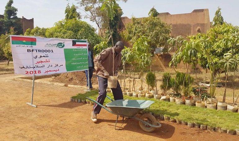 Directaid مشاريع التنمية Project Foresting - Burkinafaso 1