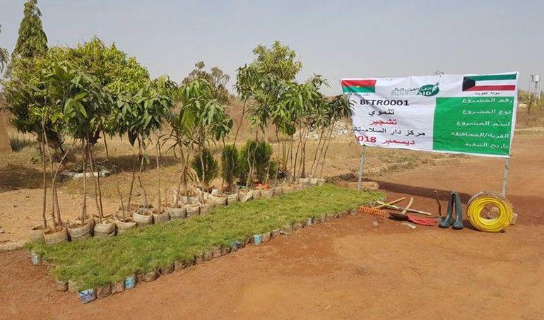 Directaid مشاريع التنمية Project Foresting - Burkinafaso 3