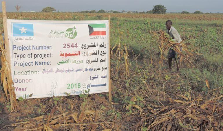 Directaid مشاريع التنمية Al-Duhaa Farm 3