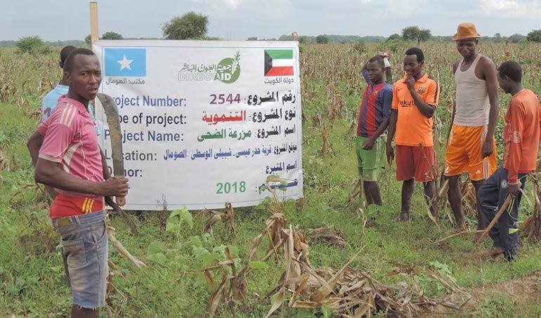 Directaid مشاريع التنمية Al-Duhaa Farm 5