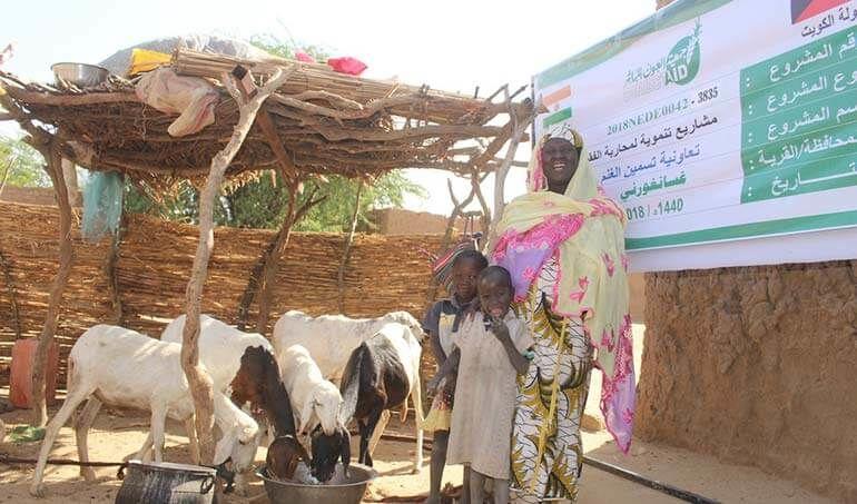 Directaid مشاريع التنمية Keep them from Destitution-5 35