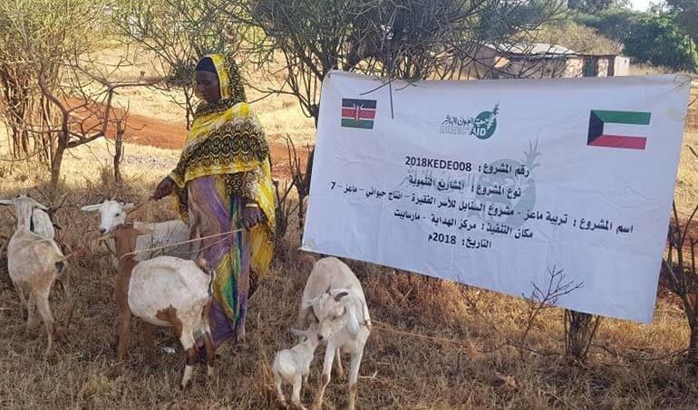Directaid مشاريع التنمية Al-Sanabel Project - Goat Production-7 10