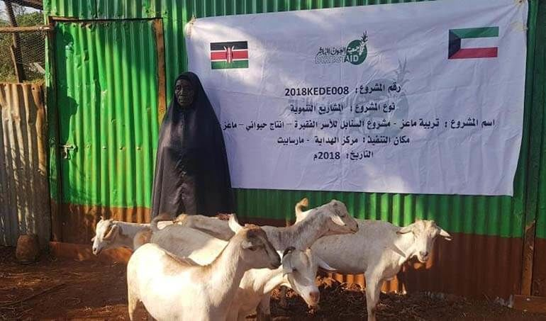 Directaid مشاريع التنمية Al-Sanabel Project - Goat Production-7 13