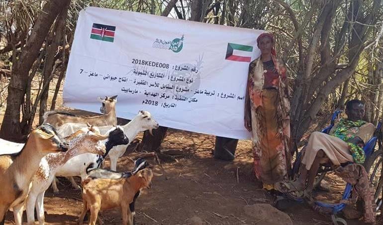 Directaid مشاريع التنمية Al-Sanabel Project - Goat Production-7 16