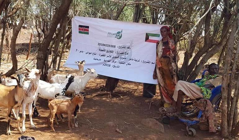 Directaid مشاريع التنمية Al-Sanabel Project - Goat Production-7 17