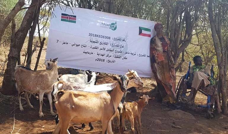 Directaid مشاريع التنمية Al-Sanabel Project - Goat Production-7 18