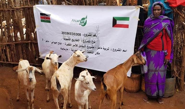 Directaid مشاريع التنمية Al-Sanabel Project - Goat Production-7 19