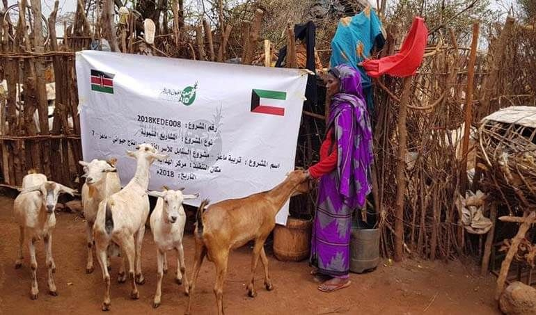 Directaid مشاريع التنمية Al-Sanabel Project - Goat Production-7 20