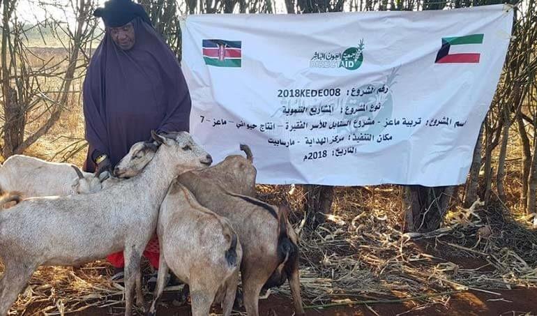 Directaid مشاريع التنمية Al-Sanabel Project - Goat Production-7 6
