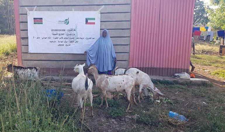Directaid مشاريع التنمية Al-Sanabel Project - Goat Production-7 7