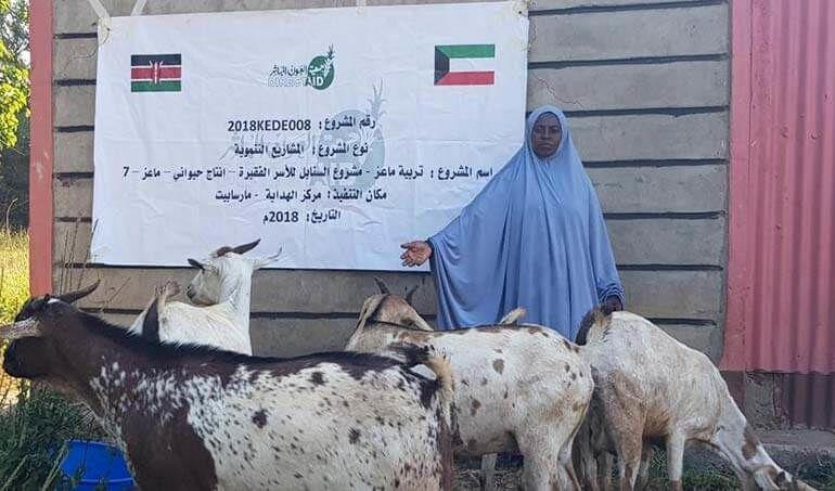 Directaid مشاريع التنمية Al-Sanabel Project - Goat Production-7 8