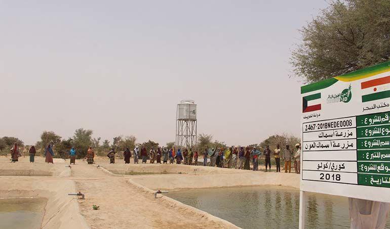 Directaid مشاريع التنمية Direct Aid Farm 2