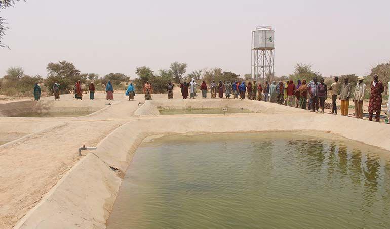 Directaid مشاريع التنمية Direct Aid Farm 3