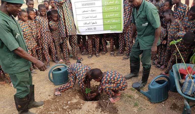 Directaid مشاريع التنمية Green Yard Project -2nd 10