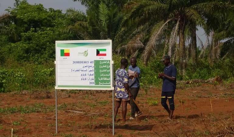 Directaid مشاريع التنمية Green Yard Project -3rd 18