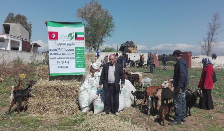 Directaid  Al-Maawn Project - Raising Goats - 1 1