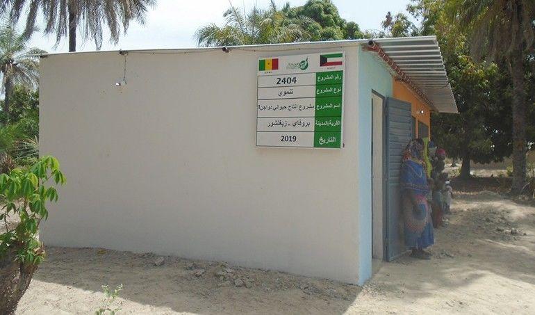 Directaid مشاريع التنمية Animal Production - Poultry - Senegal - 1 3
